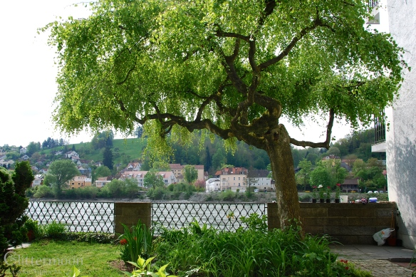 Garden in Passau, Germany