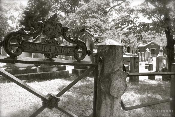 Cemetery plot - Sleepy Hollow, NY